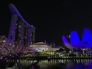 Singapore MBS by Night