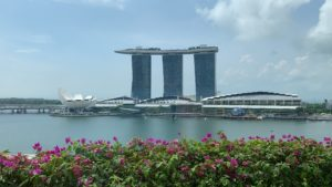 Singapore MBS with Flowers